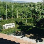 Camping Vall d'Àger